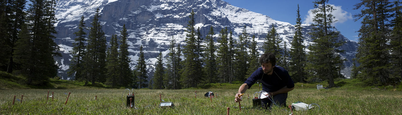 A research kneels in a meadow before a snow-capped mountain taking soil samples.